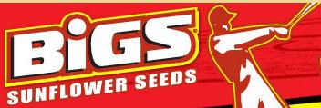 shop.bigs.com