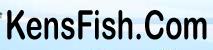 Kensfish Coupons