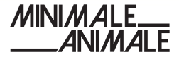 Minimale Animale Coupons