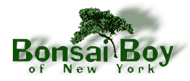 Bonsai Boy Coupons