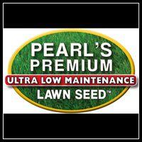 pearlspremium.com