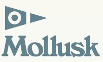 mollusksurfshop.com