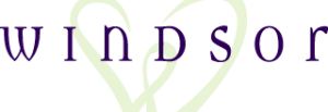 windsorstore.com